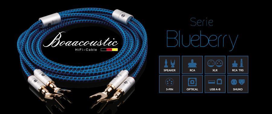 Boaacoustic_Blueberry_Banner_V3