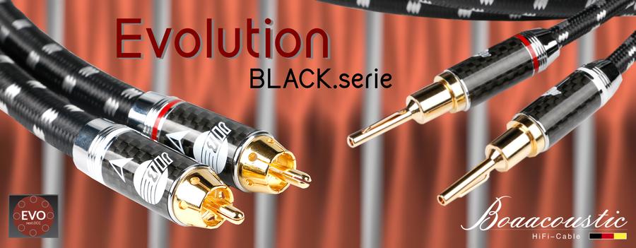 Evolution-Banner_August20_1900x740px_Evolution_BLACK.serie_mitEVO