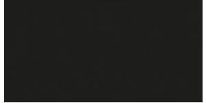 T+A Engineering Emotion Logo (300x150)